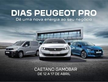 Dias Peugeot Pro: Caetano Gamobar